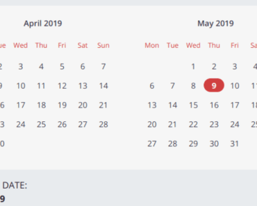Simple And Clean Vue Calendar Component - Vuelendar