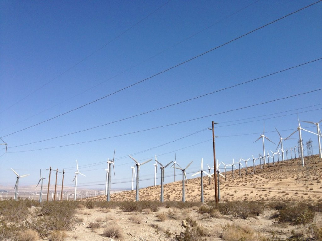 Trip to Huge Forest of Giant Wind Turbines-16