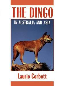 The Dingo by Laurie Corbett
