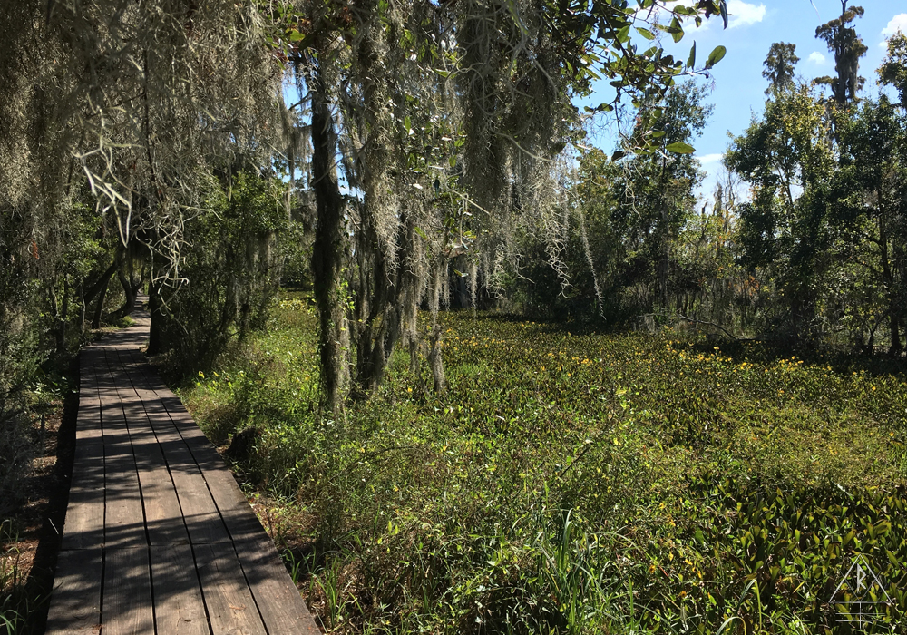 Jean Lafitte National Park, Jefferson Parish, Louisiana.