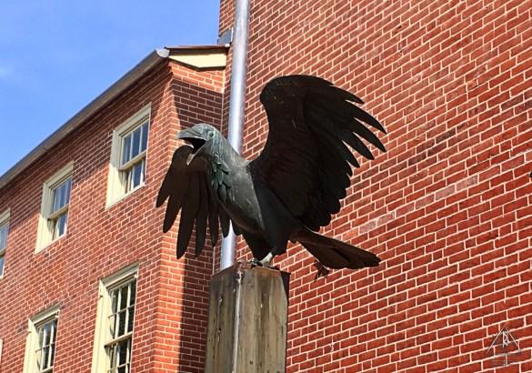 Raven Outside the Edgar Allen Poe National Historic Site in Philadelphia, Pennsylvania.