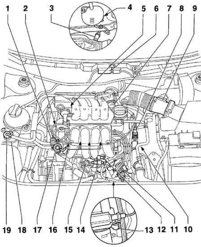 Система управления двигателем (Силовой агрегат / Система