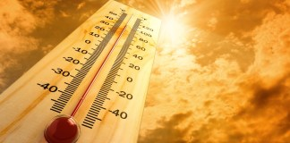 Apparently, the globe just experienced the second-hottest October ever recorded and is on track for the second-hottest year till date on record - Vyapaarjagat