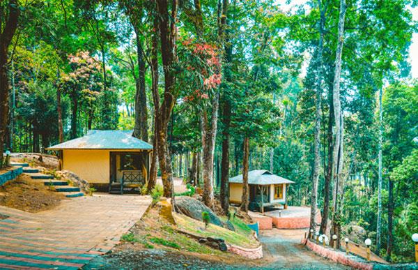 vythiri wild resort