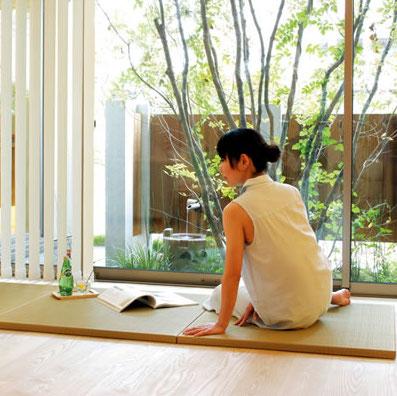 熊本畳表高級置き畳