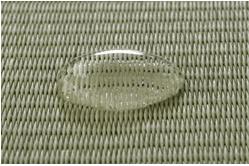 畳表の上に水滴