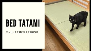 【ベッド用の畳】 1畳サイズより半畳2枚に分割が取り回しやすく、しかも送料無料でオススメ!