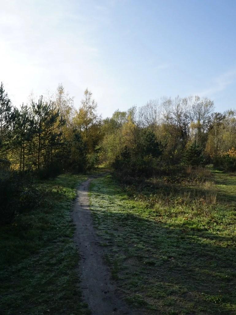 mountainbike route grolloo