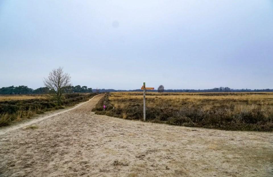 verkorte route Ballooërveld