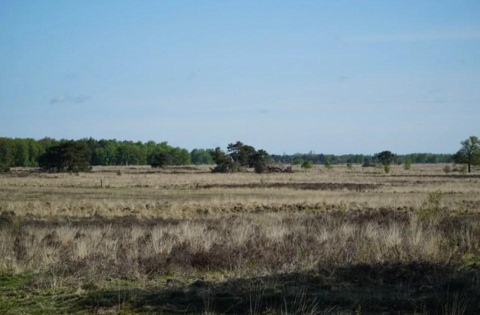 holtingerveld hunebedden
