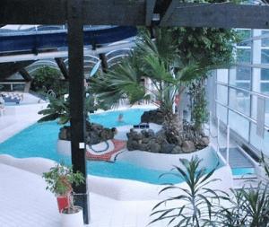 Subtropisch Zwembad Gelderland Hogenboom Vakantiepark De Berkenhorst In Kootwijk