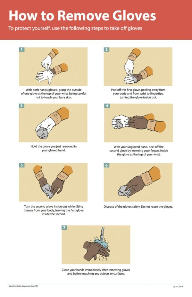 1 - With both hands gloves, grasp the outside of one glove at the top of your wrist, being careful not to touch your bare skin. 2 - Peel off this frist glove, peeling away from your body and from wrist to fingertips, turning the glove inside out. 3 - Holding the glove you just removed in your gloved hand. 4 - with your ungloved hand, peel off the second glove by inserting your fingers inside the glove at the top of your wrist. 5 - turn the second glove inside out while tilting it away from your body, leaving teh first glove inside the second. 6 - dispose of the gloves safely. Do not reuse the gloves. 7 - clean your hands immediately after removing gloves and before touching any objects or surfaces.