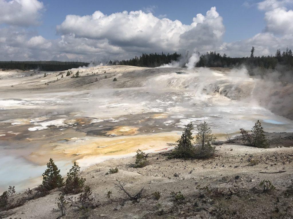 Yellowstone Day 2 Norris Geyser Basin Wacky Wanderers
