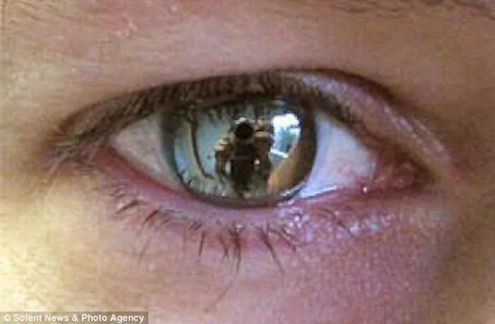 Dreadful Scary Contact Lenses - 7 Pics -06