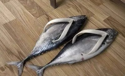 fish-slippers