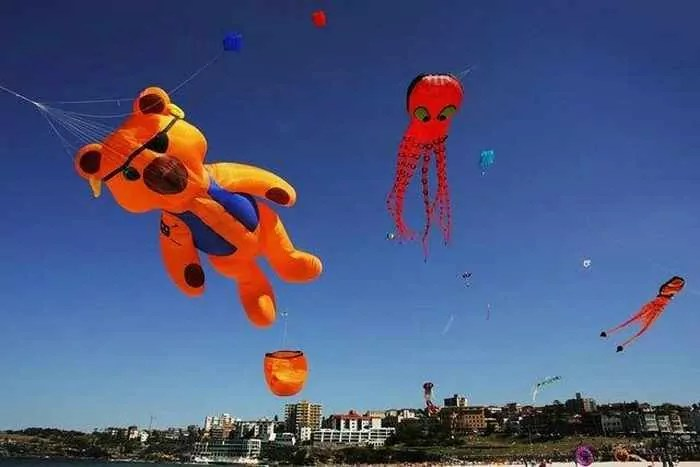 9 Awesome Pics Of Funny Air Festival In Australia -06