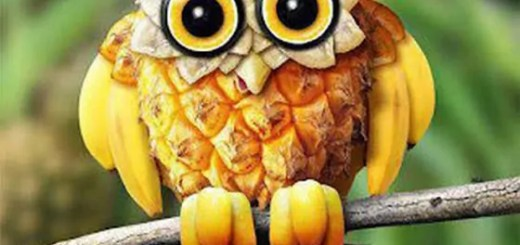 funny-food-art-09