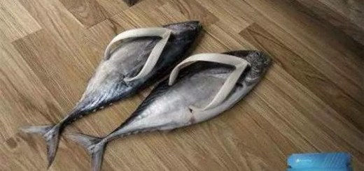 funny-house-slippers_05
