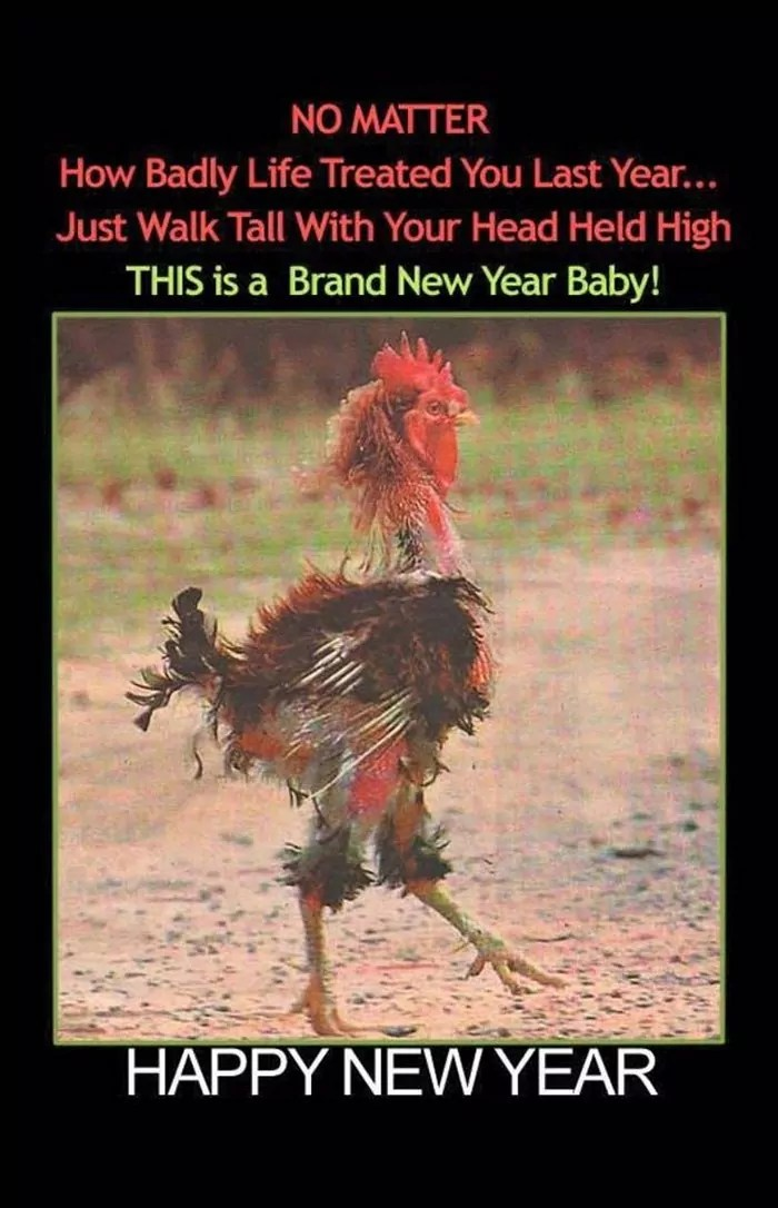Funny New Year Wishes, Quotes, Pictures And Resolutions   45 Pics  03