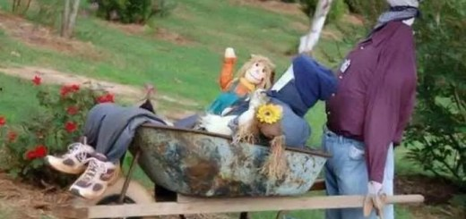 funny-scarecrows_10