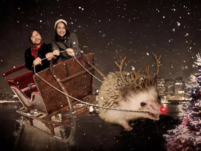 20 Hilarious Christmas Portraits With Pets That Will Make Your Day -09
