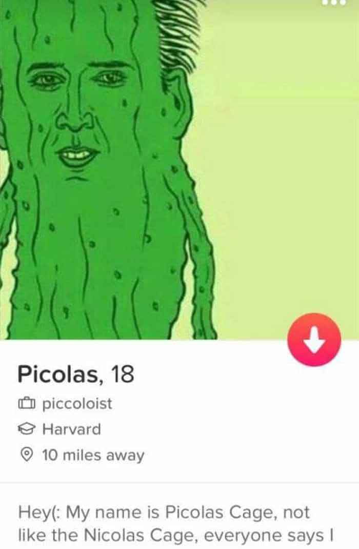 32 Hilarious Profiles Found On Tinder Will Make Your Day -03