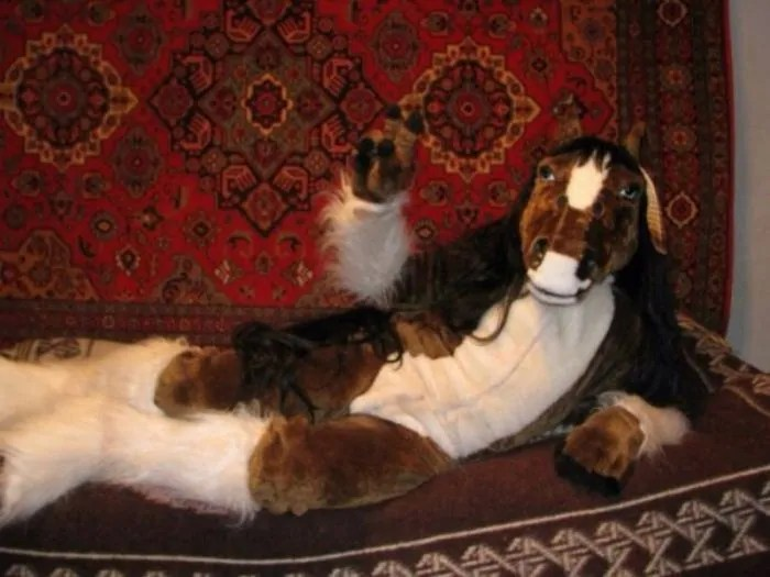28 Funny Pics of Russians That Love Carpets Will Make Your Day-05