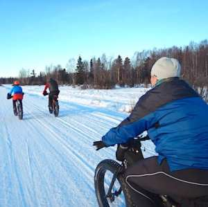 People fat tire biking in Willow Alaska