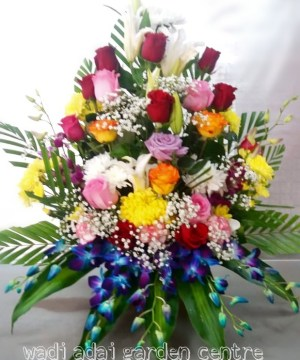 premium,luxury,arrangement, orchids,onlineflowerdelivery,