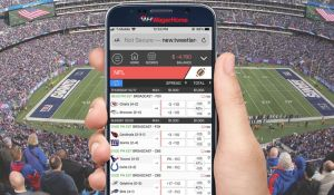 Mobile Betting Interface