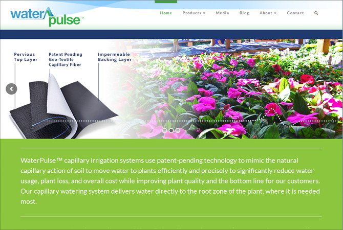 WaterPulse Website with Clean Design & Custom Infographics