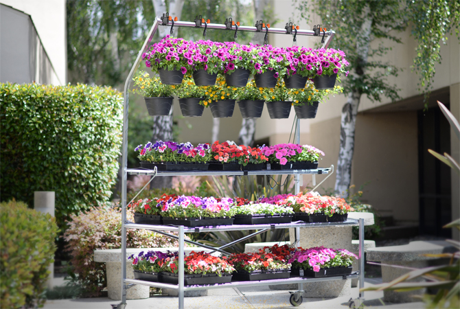 Irrigation Mats & Hanging Basket Systems can Run Simultaneously