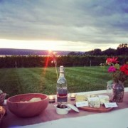 Picnic in the vineyard at sunset