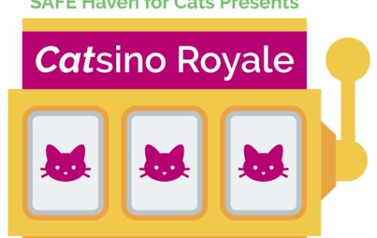 2016 Catsino royale logo