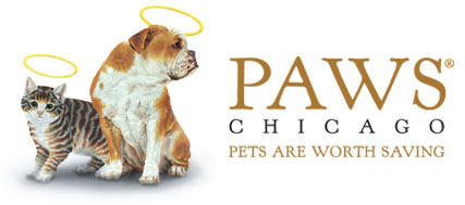 PAWS Chicago Pets Are Worth Saving