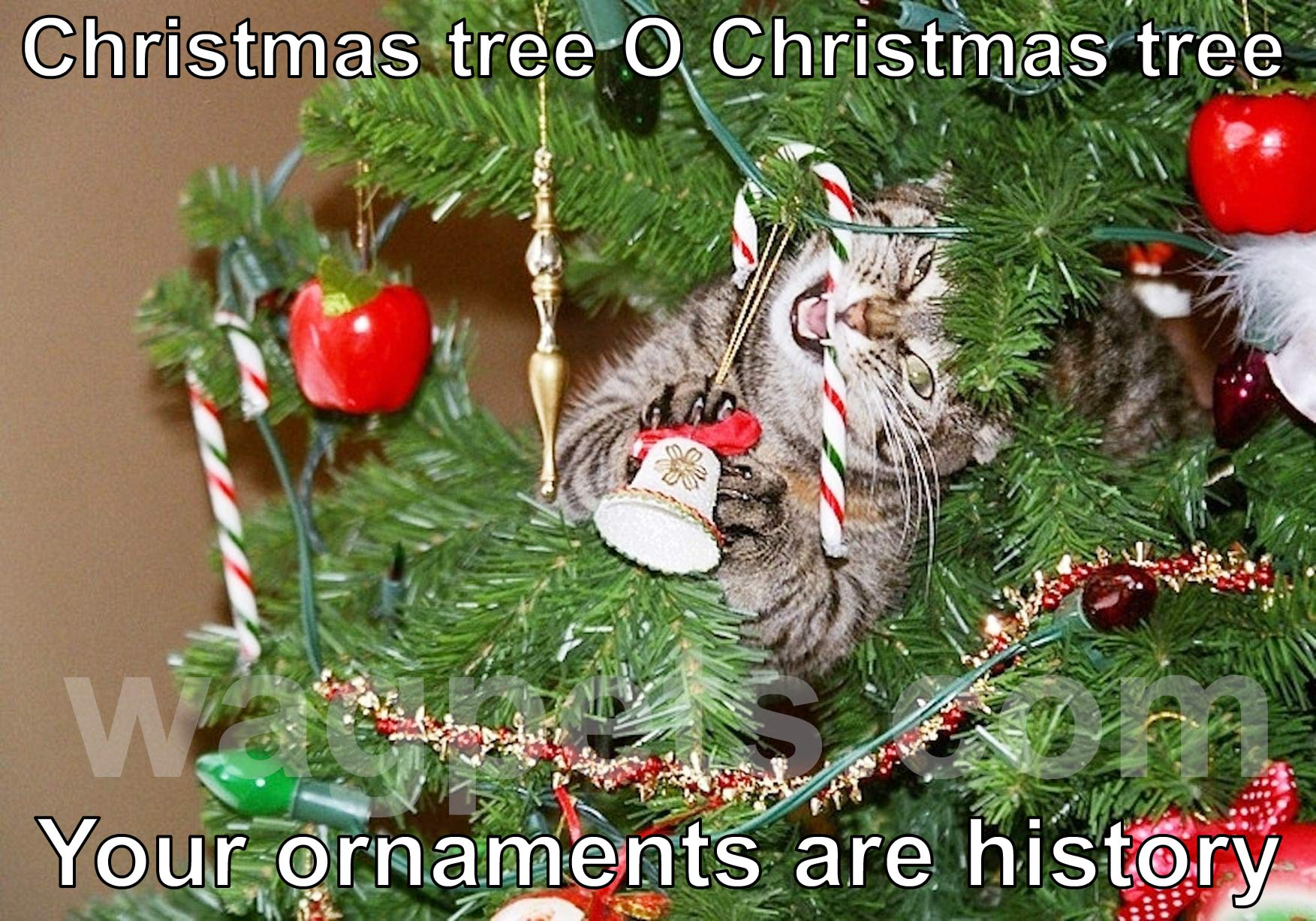 Christmas tree, O Christmas tree, your ornaments are history