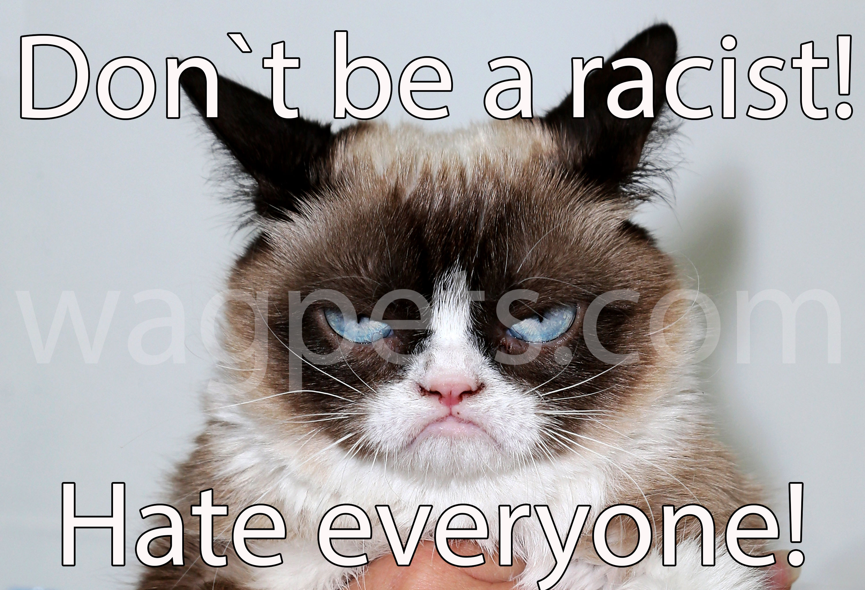 Don`t be a racist! Hate everyone!