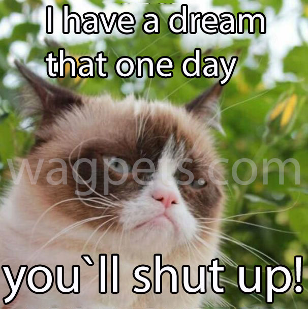 I have a dream that one day you`ll shut up!