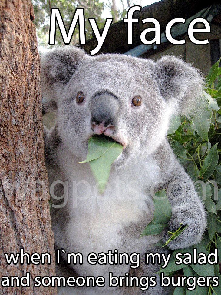 My face when I`m eating my salad and someone brings burgers