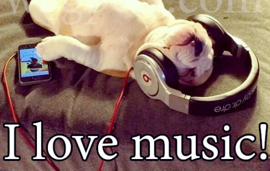 I like music! What about you?