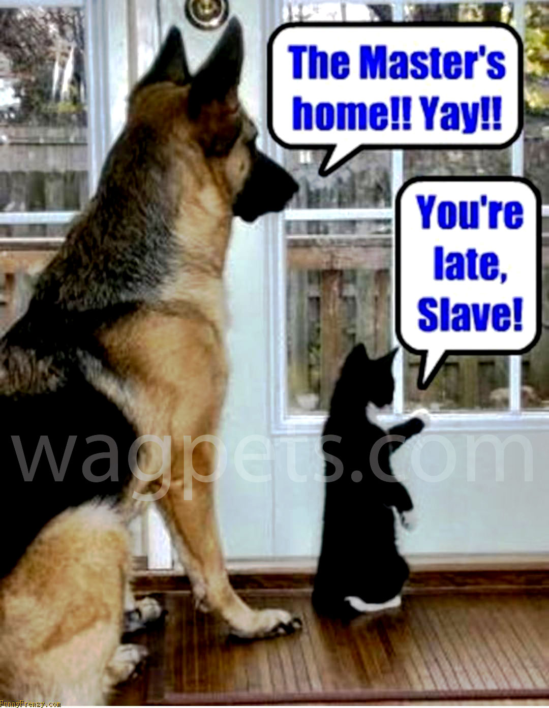 The Master`s home!! Yay!! You are late, Slave!