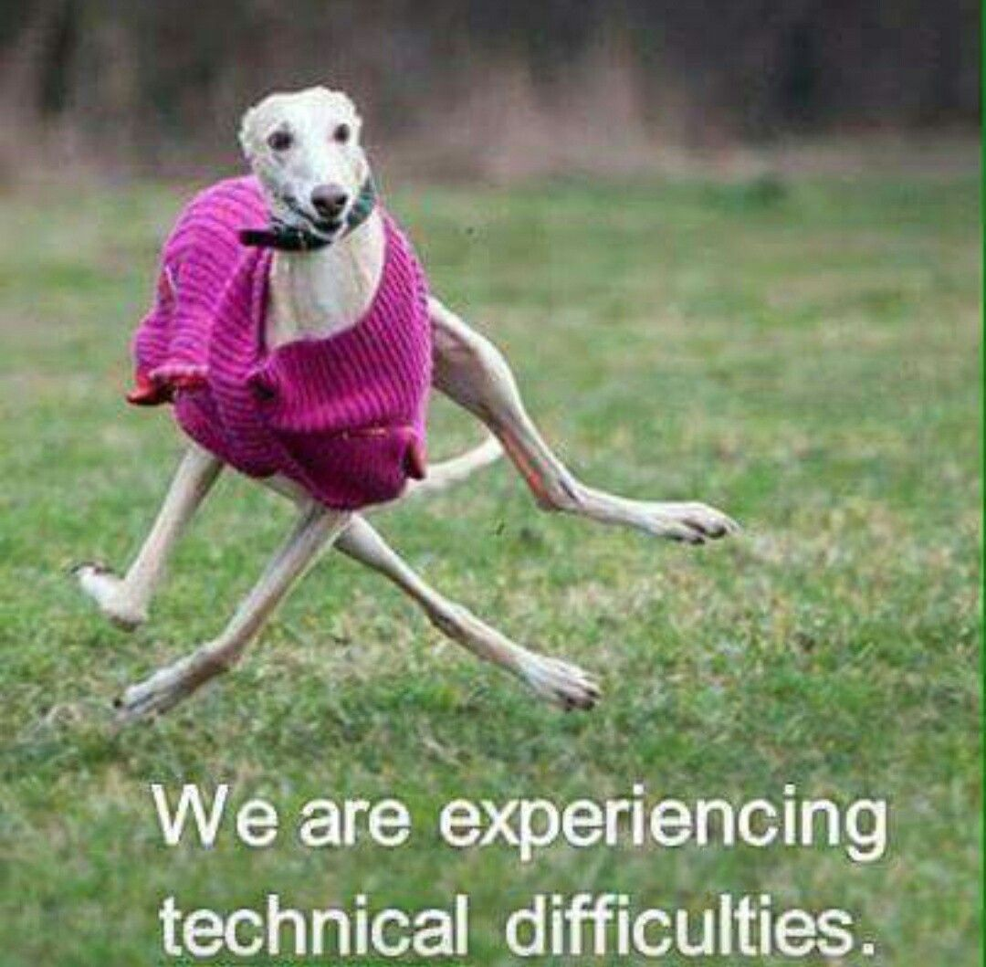 We are experiencing technical difficulties.