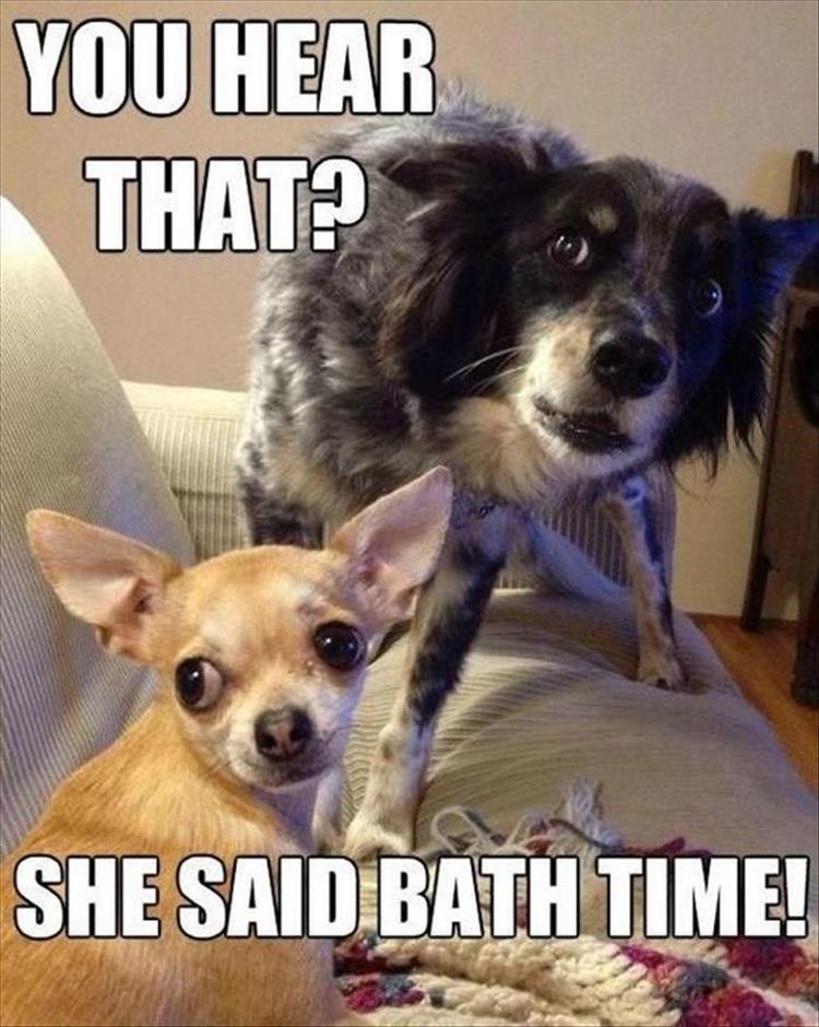 You heard that? She said bath time!