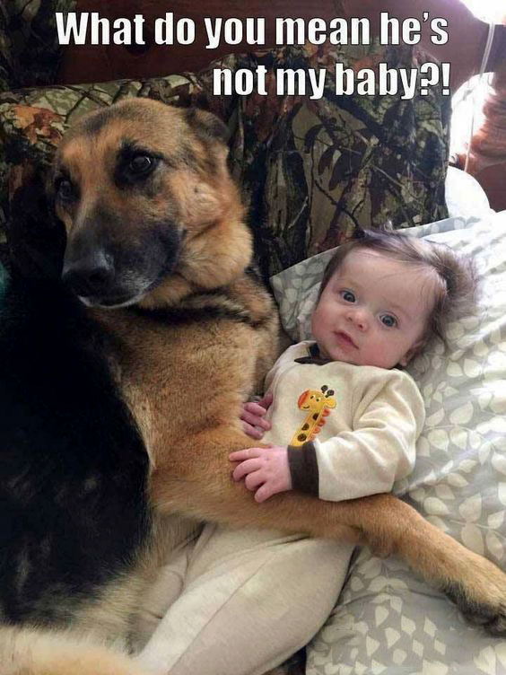 What do you mean he's not my baby?!