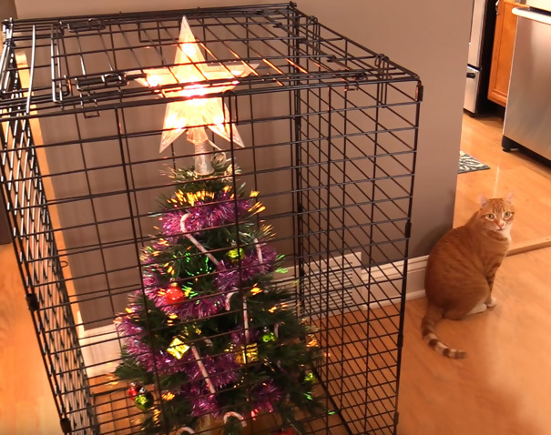 Christmas tree in a cage