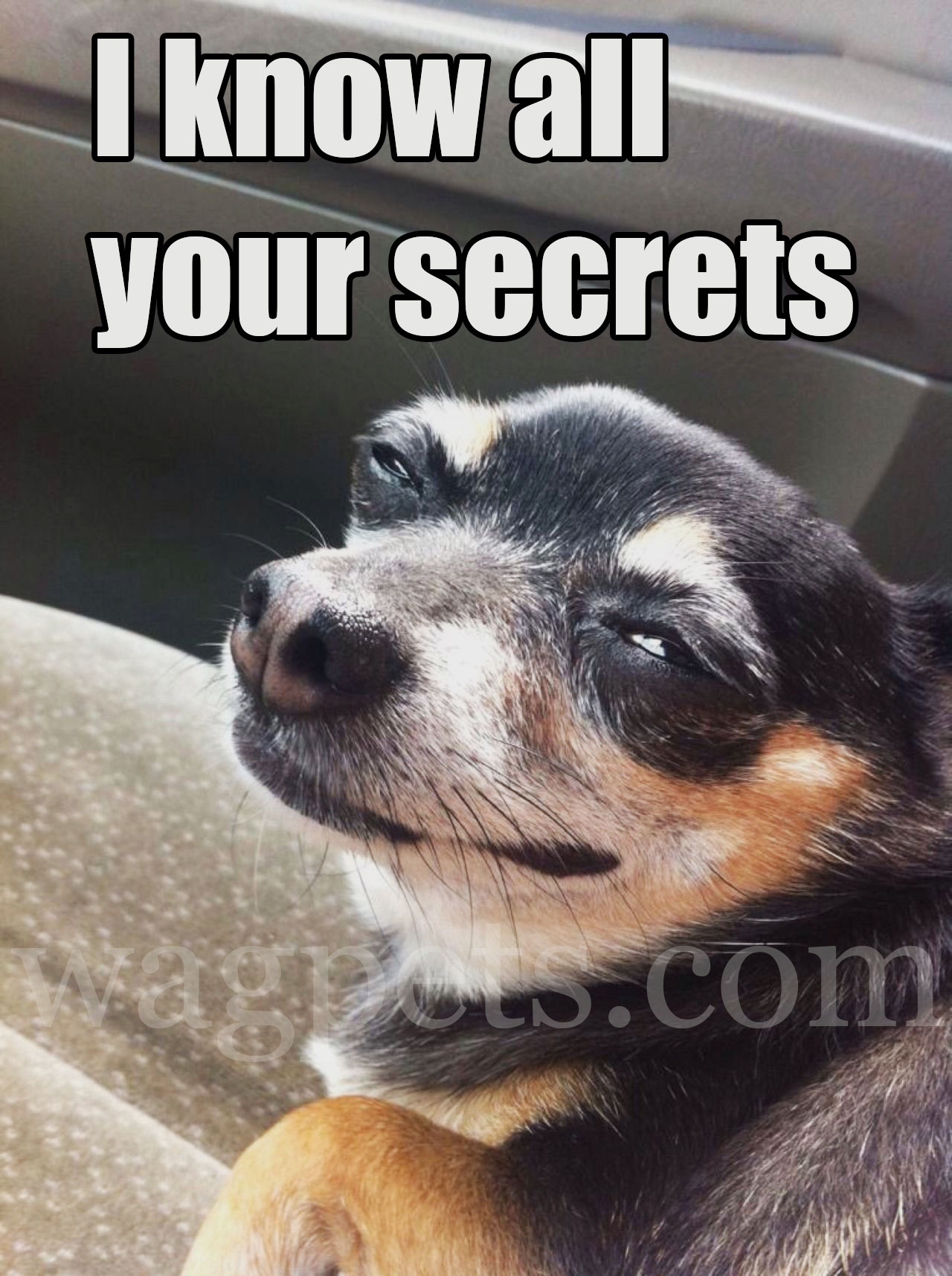 I know all your secrets
