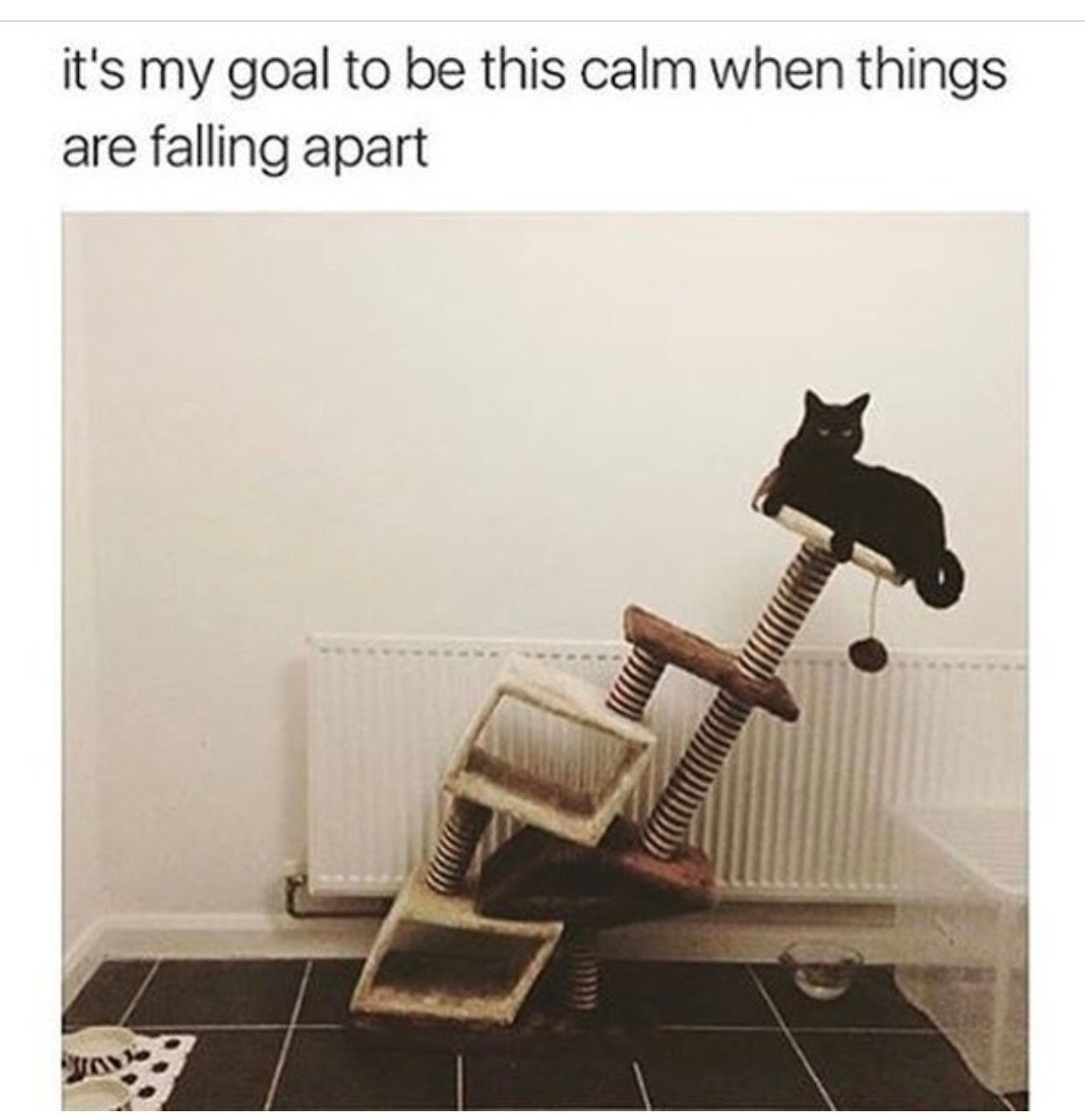 It's my goal to be this calm when things are falling apart