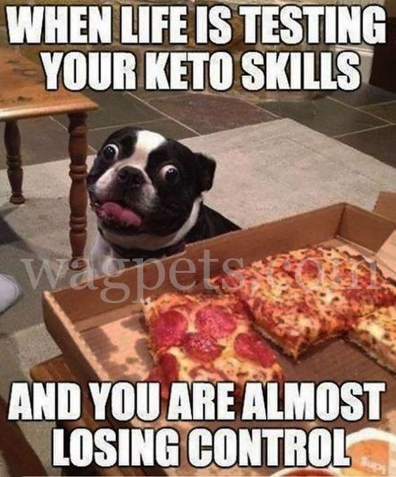 When life is testing your keto skills and you are almost losing control
