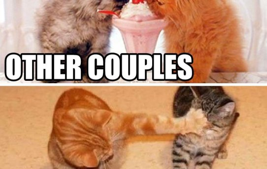 Other couples. Us.