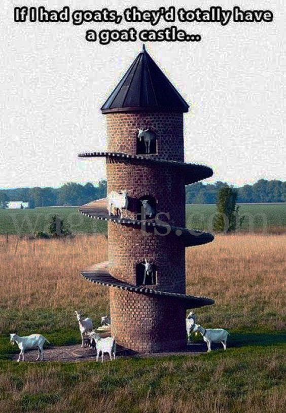 If I had goats, they'd totally have a goat castle…